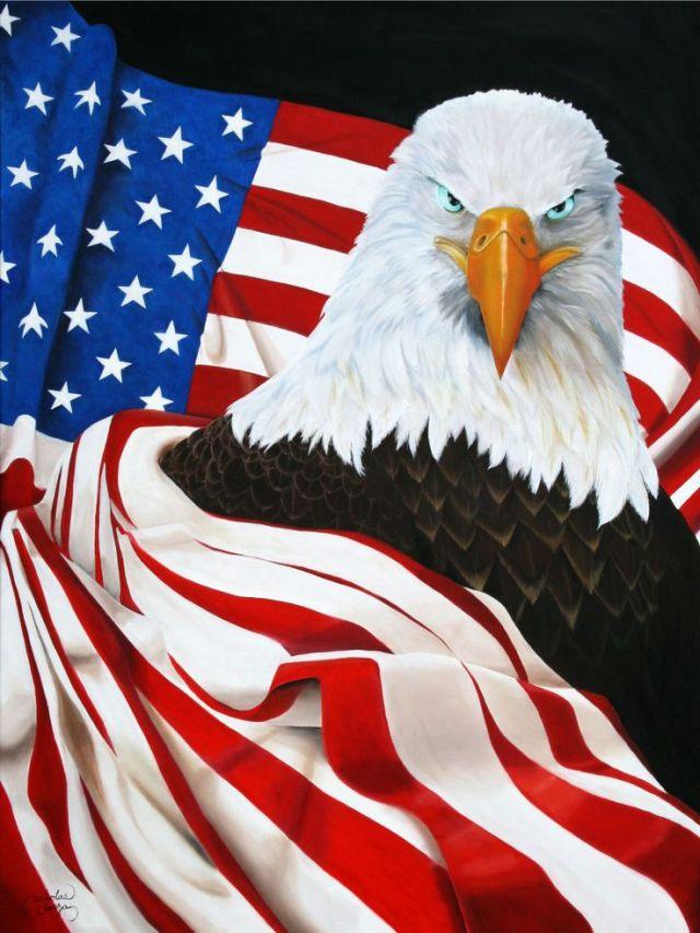 c8f29bfc92032d960e61d1917dd65b44--freedom-freedom-the-flag.jpg